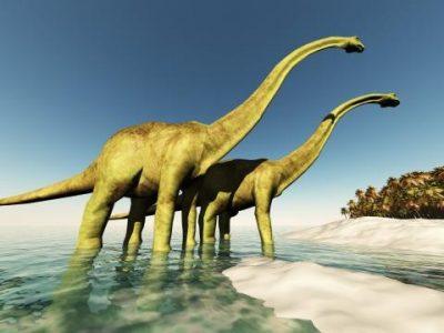 Nieuw thema: Dino's